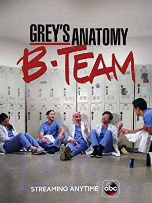 Greys Anatomy: B-Team - hulu plus