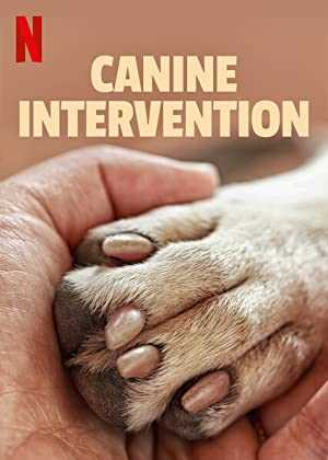 Canine Intervention - netflix