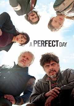 A perfect day - showtime