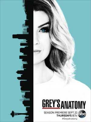 Greys Anatomy - HULU plus