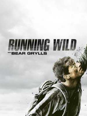 Running Wild with Bear Grylls - yahoo view