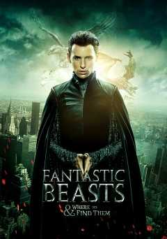Fantastic Beasts and Where to Find Them - vudu