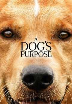 A Dogs Purpose - showtime