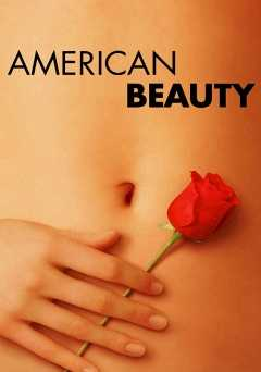 American Beauty - amazon prime